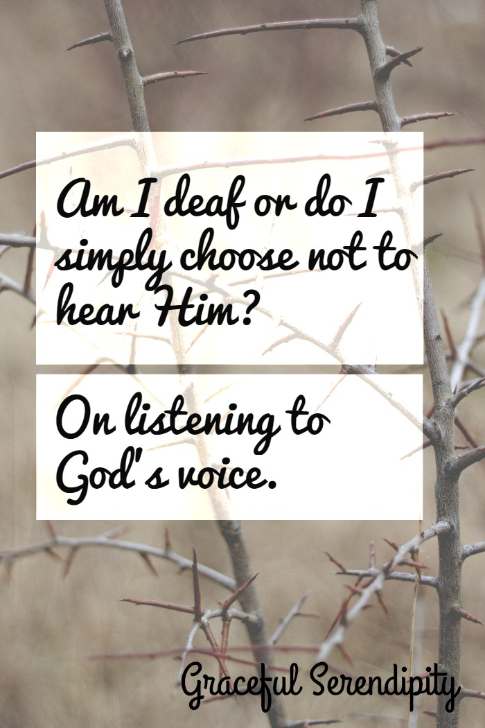 God's Voice