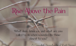 Rise Above the Pain: Part II